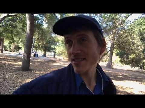 Walking A Rhodesian Ridgeback Puppy For $40 Per Hour