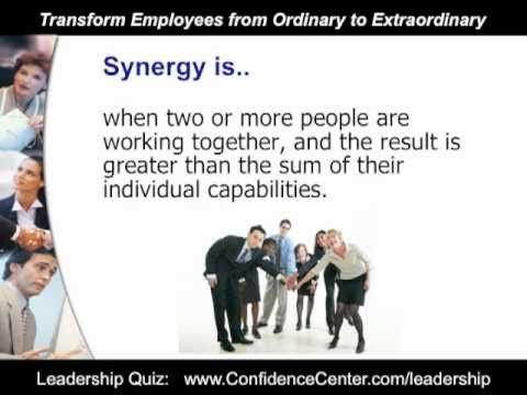 Team Work: How to Create Harmony and Synergy in Your Workplace Team
