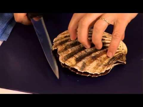 How to prepare scallops - BBC GoodFood.com - BBC Food