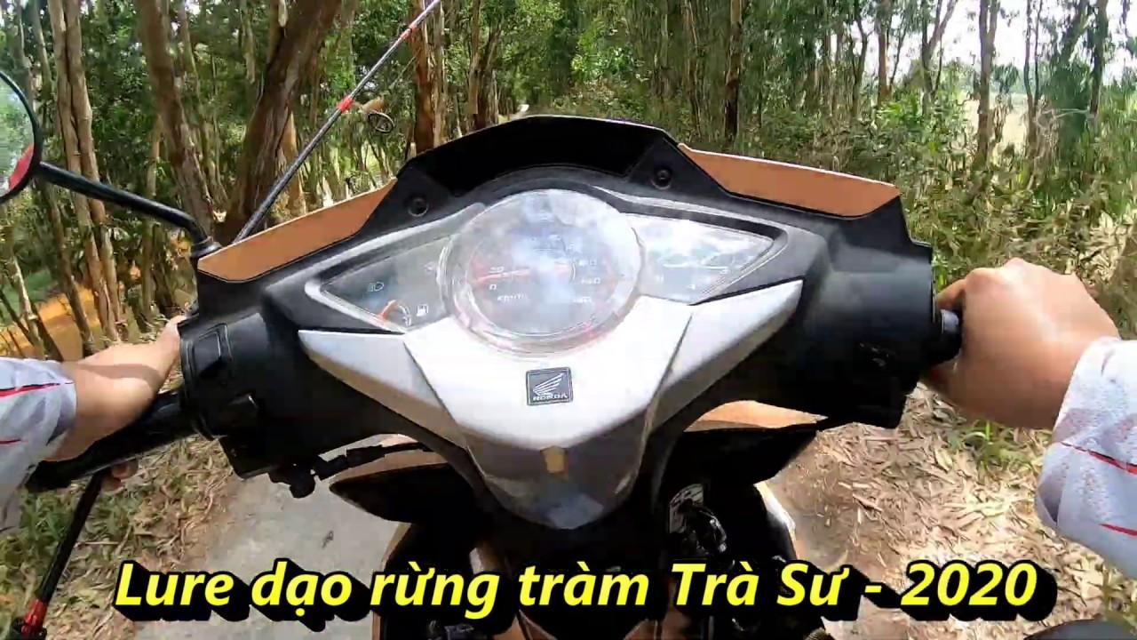 Lure dạo rừng tràm Trà Sư - An Giang