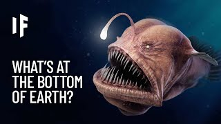 What If You Explored the Deepest Points on Earth?