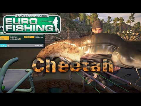 Dovetail games euro fishing boss fishin 39 for cheetah for Xbox one fishing games