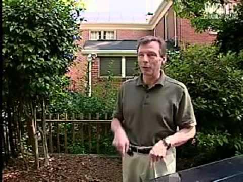 Solar panels save homeowner cash