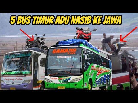 ADU NASIB KE JAWA! 5 Bus Asal NTB Yang Membuka Trayek Ke Pulau Jawa