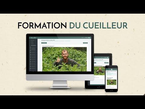 Formation herboristerie, botanique et cuisine des plantes sauvages.