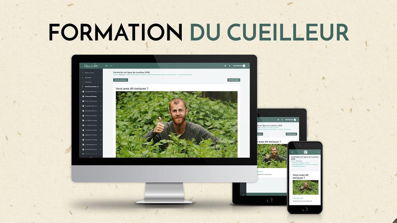 Formation en ligne plantes, botanique, herboristerie, cuisine