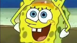 Download Video Spongebob bacot hahahaha MP3 3GP MP4