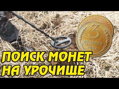 Оценка монет, где оценить монеты