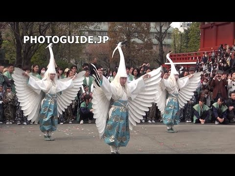 White Heron Dance (Shirasagi-no-Mai), Asakusa 2014 白鷺の舞