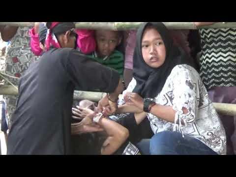 Sewu Siji (Didi Kempot) |Singer Danik Bohay-Mas Timbul | Jathilan Kids Kuda Kencana Ndadi