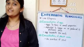 enterobius vermicularis absztrakt