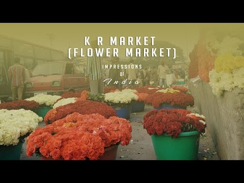 Impressions of India Ep 17 | K R Market, Asia's Biggest Flower Market