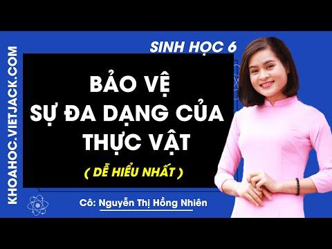 Sinh học 6 - Bài 49 - Bảo vệ sự đa dạng của thực vật - Cô Nguyễn Thị Hồng Nhiên (DỄ HIỂU NHẤT)