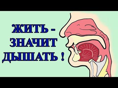 Влияние состояния носоглотки на возникновение хронических и онкологических заболеваний.