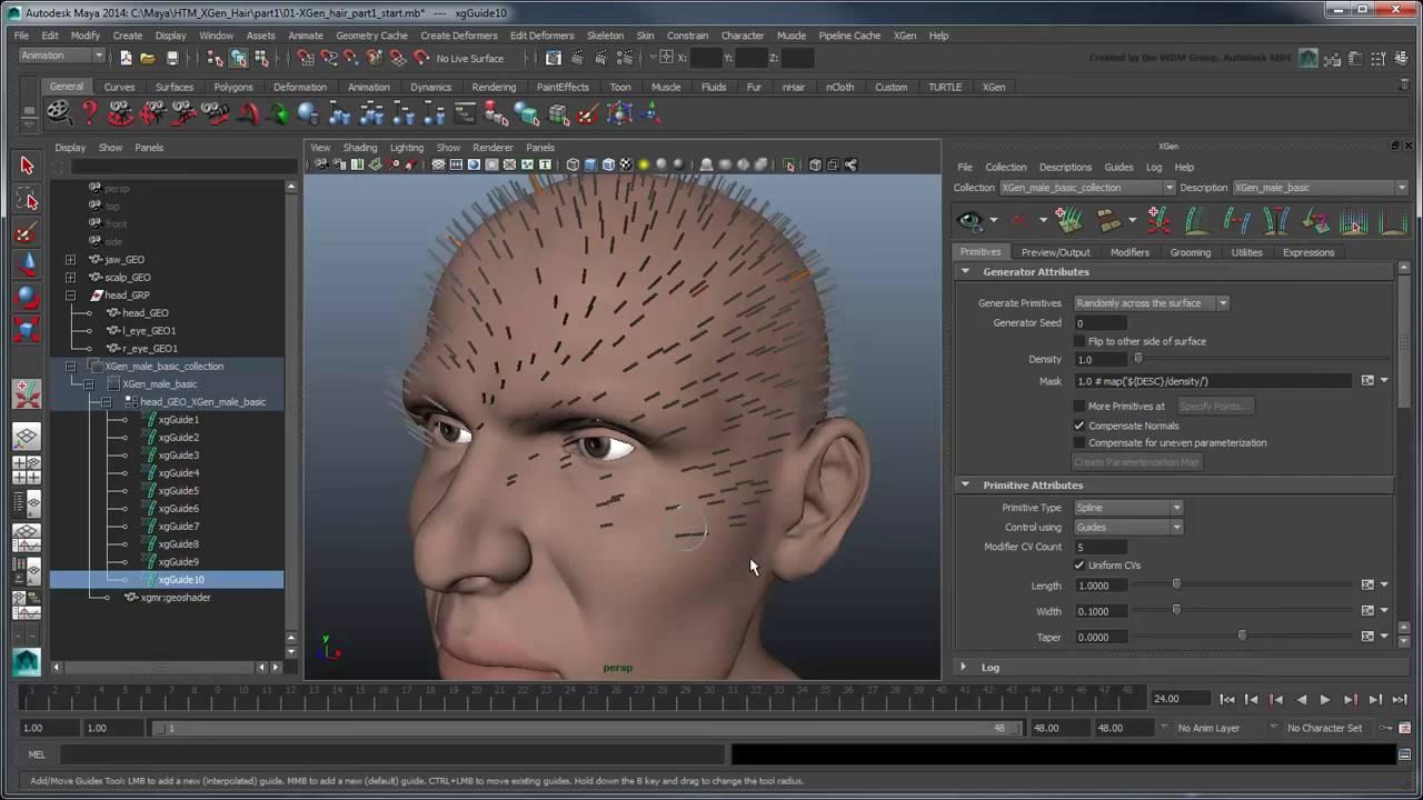 Cgi 3d Tutorials : Creating Xgen Hair Part 1 Basic Hair