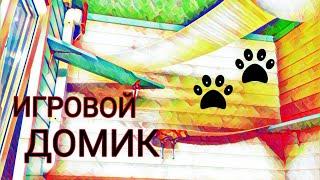 ДОМИК ДЛЯ КОТЯТ//питомник бурм Arctic Silk