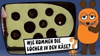 Wie kommen die Löcher in den Käse? - Sachgeschichten mit Armin Maiwald