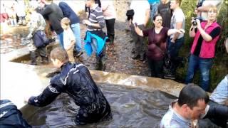 Commando Challenge 2013 - Sheep Dip