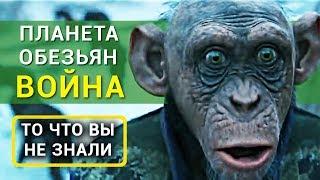 Планета обезьян: война - все что вы не знали об этом фильме 2017