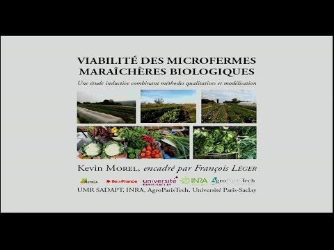 Viabilité des microfermes maraîchères biologiques. Thèse de Kevin Morel
