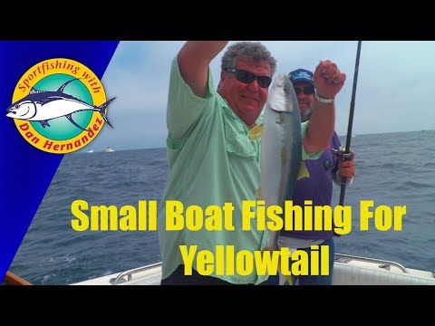 Yellowtail Fishing on Dan Hernandez Private Charter  | SPORT FISHING
