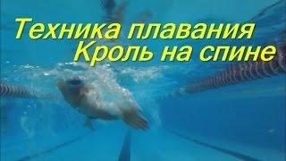 Техника кроля на спине/ КАК НАУЧИТЬСЯ ПРАВИЛЬНО ПЛАВАТЬ/ How to learn to swim