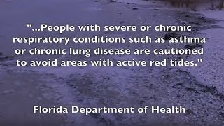The Costs of Red Tide to Our Health and Economy - Voting is the Answer