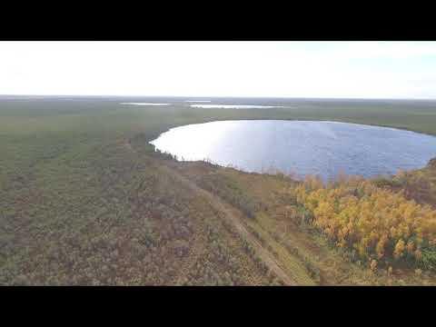 Васюганское болото, озеро Малый Палтычак