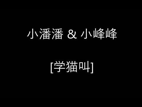 小潘潘 & 小峰峰 [學貓叫] 歌詞 - YouTube