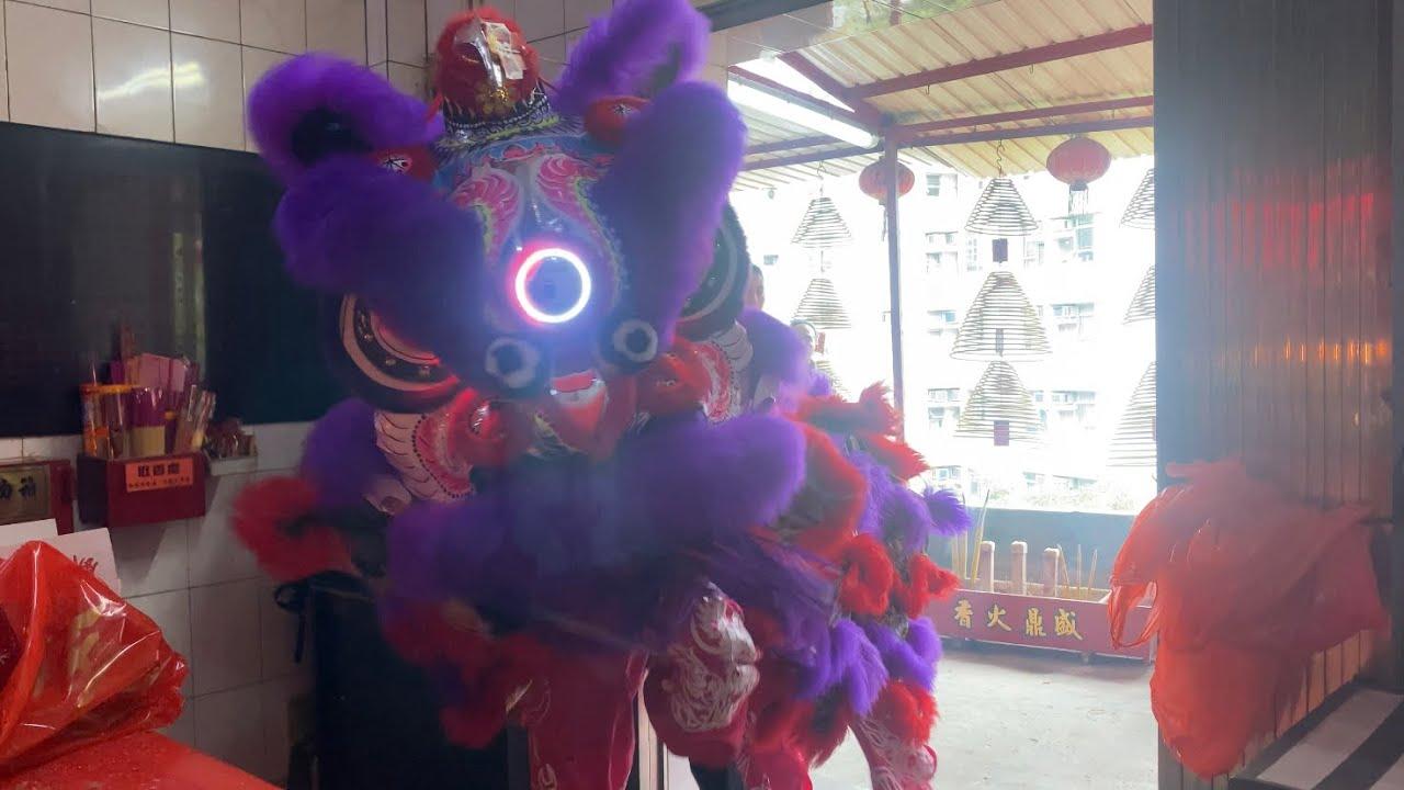 香港陳國健龍獅團 國棟體育會@大紅大紫醒獅開光落地儀式 James Chan Lion Dance - YouTube