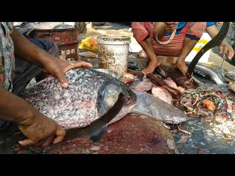 Unlimited Variety Of Fish Fillet By Road Side Fish Cutting Man।Fish Fillet At Road Shop