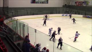 Xtreme Atom Major Vs Nordiques