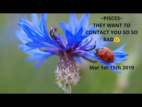 ~PISCES~😢They Want To Contact You So So Bad😢 March 1st-15th 2019