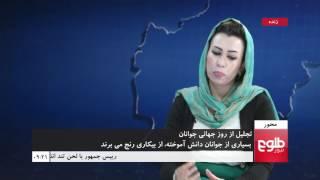 MEHWAR: International Youth Day Celebrated in Kabul /محور: تجلیل از روزجهانی جوانان