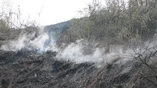 山火事2年消えず苦情も 佐賀の「ボタ山」