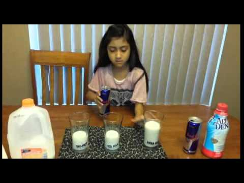 3rd Grade Science Project Youtube