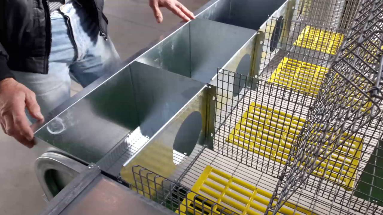 Оборудование для кроликов, клетки для кроликов, мини фермы купить. 1 2 след▻. Клетка для содержания кроликов промышленного типа. Может.