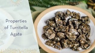 Properties of Turritella Agate