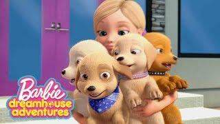 Davanti al giudice ???? Barbie Dreamhouse Adventures | Cartoni Barbie | Barbie Italiano