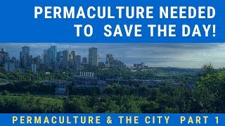 Permaculture & The City  Part 1 - Permaculture Needed To  Save The Day!