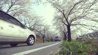 제19회 제천 청풍호 벚꽃축제 UCC 3탄