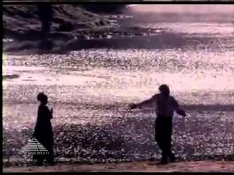 Poove Poove Pen Poove Video Song[HD] - YouTube.flv