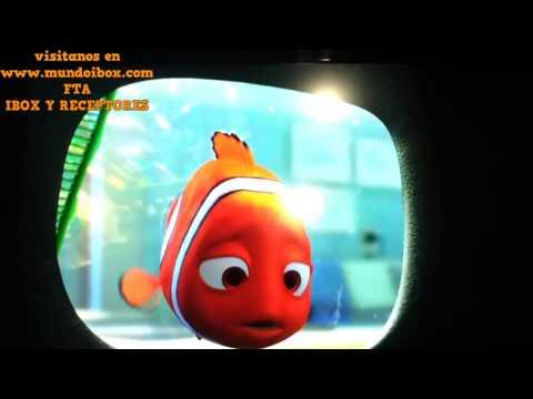 MUNDO IBOX   FunnyCat TV