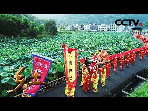 Download 《乡土》丰收中国——乡土颂丰年 振兴篇 20180928 | CCTV农业