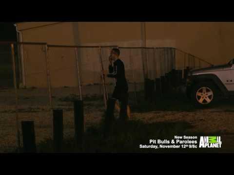 Exclusive clip: 'PIt Bulls & Parolees' Season 8