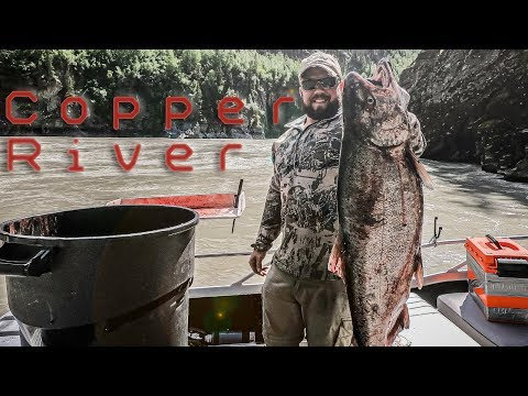 Copper River Salmon Fishing | 2019 | Alaska