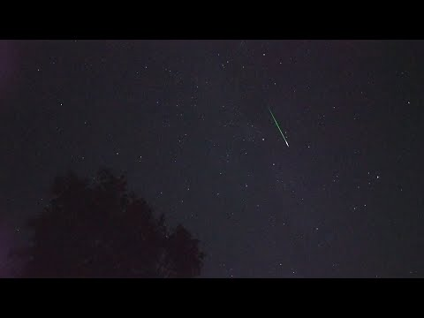 Perseid Meteor Shower - Perseiden 2019 - 40 Meteors in real time
