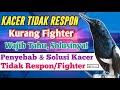 Cara Mengatasi Kacer Tidak Mau Tarung Kurang Fighter Dan Tidak Respon  Mp3 - Mp4 Download
