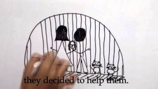 Los gatos del Cementerio/ Cemetery Cats (video with english subtitles)