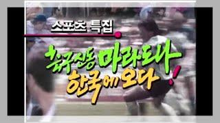 [ 하늘로 떠난 '축구의 신' 마라도나 ] KBS 스포…